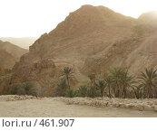 Горы в северной африке (2008 год). Стоковое фото, фотограф Софья Краевская / Фотобанк Лори