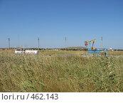 Купить «Добыча нефти в Крыму», фото № 462143, снято 3 сентября 2008 г. (c) Кристина Викулова / Фотобанк Лори