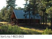 Деревянный дом в сосновом бору Карелии. Стоковое фото, фотограф Юлия Яковлева / Фотобанк Лори