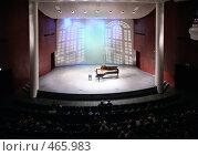 Купить «Сцена концертного зала», фото № 465983, снято 26 апреля 2018 г. (c) Losevsky Pavel / Фотобанк Лори