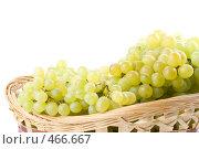 Купить «Свежий виноград в корзинке на белом фоне», фото № 466667, снято 24 августа 2008 г. (c) Мельников Дмитрий / Фотобанк Лори