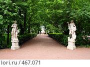 Аллея Летнего сада в Санкт-Петербурге (2008 год). Редакционное фото, фотограф Михаил Коханчиков / Фотобанк Лори
