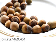 Купить «Тарелка с орехами. Фундук.», фото № 469451, снято 2 сентября 2008 г. (c) Лошкарев Антон / Фотобанк Лори