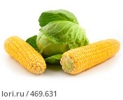 Купить «Кукуруза с капустой», фото № 469631, снято 30 мая 2020 г. (c) Коннов Леонид Петрович / Фотобанк Лори