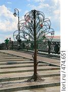 Купить «Новое металлическое дерево с редкими свадебными замками на Лужковом мосту, Москва», фото № 474651, снято 13 июля 2008 г. (c) Fro / Фотобанк Лори