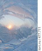 Купить «Мороз и солнце», фото № 477711, снято 8 февраля 2007 г. (c) Dina / Фотобанк Лори