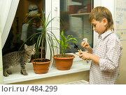 Купить «Мальчик ухаживает за цветами», фото № 484299, снято 29 сентября 2008 г. (c) Ольга Красавина / Фотобанк Лори