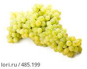 Купить «Свежий виноград на белом фоне», фото № 485199, снято 24 августа 2008 г. (c) Мельников Дмитрий / Фотобанк Лори