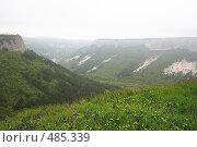 Купить «Весна на Мангупе. Крым», эксклюзивное фото № 485339, снято 27 апреля 2008 г. (c) Дмитрий Неумоин / Фотобанк Лори