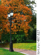 Купить «Осенний парк», фото № 487827, снято 28 сентября 2008 г. (c) Владимир Казарин / Фотобанк Лори