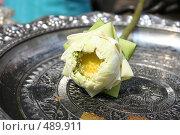 Купить «Лотос», фото № 489911, снято 23 марта 2007 г. (c) Дмитрий Кожевников / Фотобанк Лори