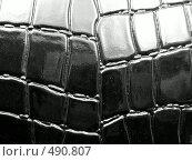 Купить «Крокодиловая кожа», фото № 490807, снято 29 января 2020 г. (c) ElenArt / Фотобанк Лори