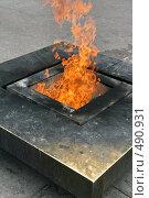 Купить «Вечный огонь на Марсовом поле. Санкт-Петербург», фото № 490931, снято 21 июня 2008 г. (c) Александр Секретарев / Фотобанк Лори