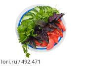 Купить «Овощная нарезка на тарелке с голубой каемкой», фото № 492471, снято 27 сентября 2008 г. (c) Федор Королевский / Фотобанк Лори