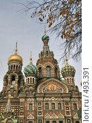 Купить «Собор Спаса-на-Крови. Санкт-Петербург», фото № 493391, снято 4 октября 2008 г. (c) Александр Секретарев / Фотобанк Лори