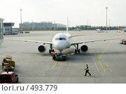 Купить «Мюнхенский аэропорт. Буксировка самолёта возле посадочных терминалов.», фото № 493779, снято 27 сентября 2008 г. (c) Павел Гаврилов / Фотобанк Лори