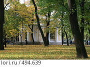 Купить «Михайловский сад осенью. Санкт-Петербург», фото № 494639, снято 4 октября 2008 г. (c) Александр Секретарев / Фотобанк Лори