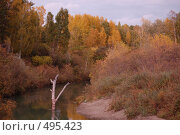 Река Лосиха. Стоковое фото, фотограф Tabashnikov Alexei / Фотобанк Лори