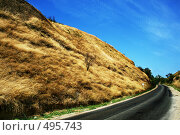 Купить «Дорога в горах», фото № 495743, снято 9 сентября 2008 г. (c) Вероника Галкина / Фотобанк Лори