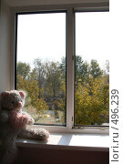 Купить «Мишка на окне», фото № 496239, снято 5 октября 2008 г. (c) Ольга Батракова / Фотобанк Лори