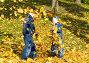 Дети в осенней листве, фото № 497739, снято 5 октября 2008 г. (c) Сергей Лаврентьев / Фотобанк Лори