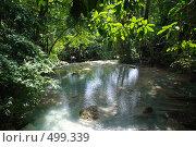 Река в тропическом лесу (джунглях) (2008 год). Стоковое фото, фотограф Сергей Анисимов / Фотобанк Лори