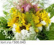Цветы. Стоковое фото, фотограф Александр Давыдов / Фотобанк Лори