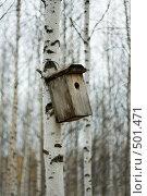 Купить «Скворечник 2», фото № 501471, снято 7 октября 2008 г. (c) Пастухов Максим Владимирович / Фотобанк Лори