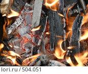 Купить «Огонь», фото № 504051, снято 20 августа 2008 г. (c) Овчинников Владимир / Фотобанк Лори