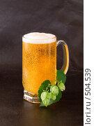 Пиво, хмель. Стоковое фото, фотограф Дмитрий Клочко / Фотобанк Лори