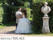 Купить «Свадьба в Кусково 2008», эксклюзивное фото № 505423, снято 16 августа 2008 г. (c) Дмитрий Неумоин / Фотобанк Лори