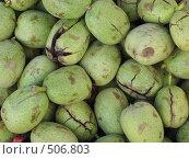 Купить «Фон из грецких орехов в кожуре», фото № 506803, снято 18 сентября 2008 г. (c) Лада Иванова / Фотобанк Лори