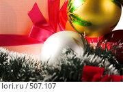 Купить «Новогодний подарок», фото № 507107, снято 12 октября 2008 г. (c) Коваль Василий / Фотобанк Лори