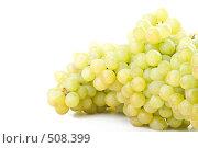 Купить «Свежий виноград на белом фоне», фото № 508399, снято 24 августа 2008 г. (c) Мельников Дмитрий / Фотобанк Лори