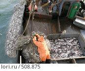 Рыбалка. Стоковое фото, фотограф Салякин Виталий Валерьевич / Фотобанк Лори