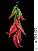 Купить «Красный, перец на черном фоне. Связка», фото № 509875, снято 10 октября 2008 г. (c) Сергей Халадад / Фотобанк Лори