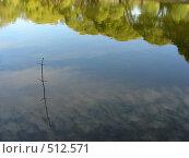 Купить «Отражение облаков и деревьев в воде», эксклюзивное фото № 512571, снято 21 сентября 2008 г. (c) lana1501 / Фотобанк Лори