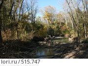 Ручей в лесу. Стоковое фото, фотограф Александр Бутенко / Фотобанк Лори