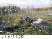 Купить «Затерянный мир. Участок со старым домом на просеке под линией электропередач.», эксклюзивное фото № 516083, снято 12 октября 2008 г. (c) Александр Щепин / Фотобанк Лори