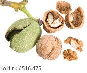 Купить «Грецкие орехи», фото № 516475, снято 26 сентября 2008 г. (c) Анатолий Заводсков / Фотобанк Лори