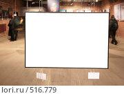 Купить «Пустая рама на выставке», фото № 516779, снято 23 марта 2019 г. (c) Losevsky Pavel / Фотобанк Лори