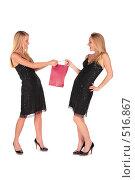 Купить «Девушки отбирают друг у друга пакет с покупками», фото № 516867, снято 26 сентября 2018 г. (c) Losevsky Pavel / Фотобанк Лори
