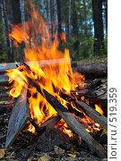 Купить «Пламя костра», фото № 519359, снято 20 сентября 2008 г. (c) Стучалова Наталия / Фотобанк Лори
