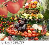 Купить «Овощи», фото № 526787, снято 23 августа 2008 г. (c) Глеб Тропин / Фотобанк Лори