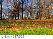 Купить «Осенний парк в Коломенском», фото № 527335, снято 22 октября 2008 г. (c) Владимир Казарин / Фотобанк Лори