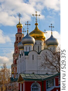 Купить «Храм Новодевичьего монастыря», фото № 529375, снято 25 октября 2008 г. (c) Владимир Казарин / Фотобанк Лори