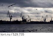 Портовые краны и чайки. Санкт-Петербург. (2008 год). Стоковое фото, фотограф Егор Архипов / Фотобанк Лори