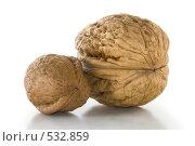 Купить «Пара грецких орехов», фото № 532859, снято 21 октября 2008 г. (c) Артем Ефимов / Фотобанк Лори
