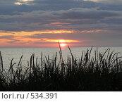 Купить «Восход солнца на море», фото № 534391, снято 8 октября 2008 г. (c) Роман Мельник / Фотобанк Лори