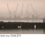 Купить «Туманное утро в порту», фото № 534571, снято 25 ноября 2006 г. (c) Роман Мельник / Фотобанк Лори